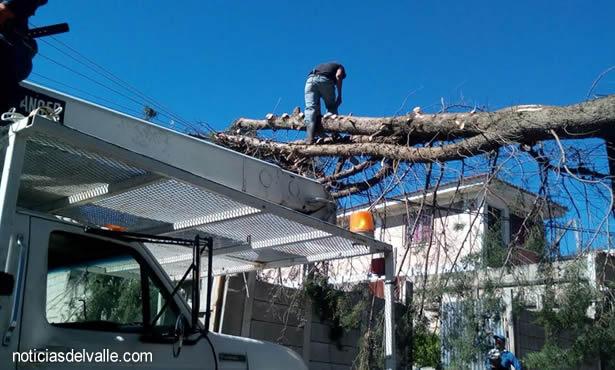 Trabajan para restablecer energía eléctrica