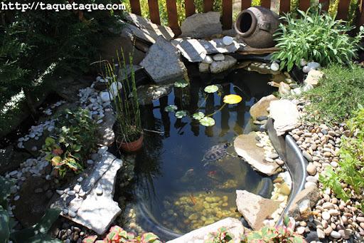 Estanque del jardín de mis cuñados en Santiago de Compostela