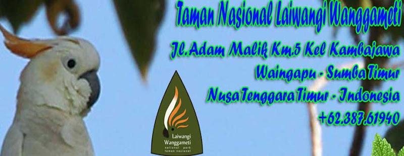 Kakatua Jambul Jingga, Ikon Spesies Endemik TN Laiwangi Wanggameti