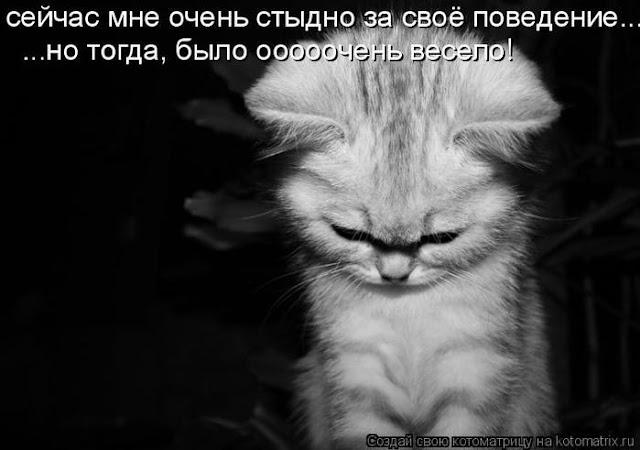 Ни дня без улыбки. У меня такое неприятное чувство, что вы правы