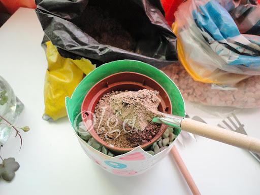 maceta gato- flower pot plant