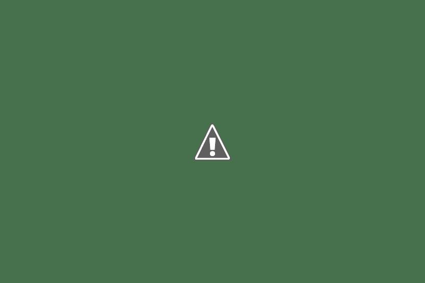 АКЕВ Каменск-Уральский Неделя ГВ