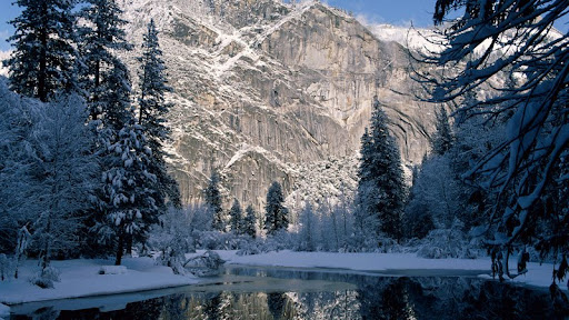 Yosemite National Park, California, USA.jpg