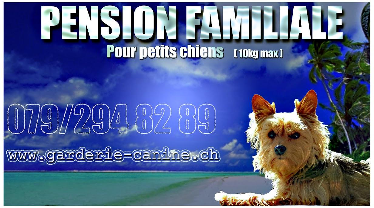 Garderie-canine.ch