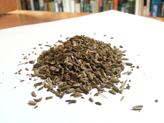 Wild Fennel Seed (Semi di Finocchietto Selvatico)