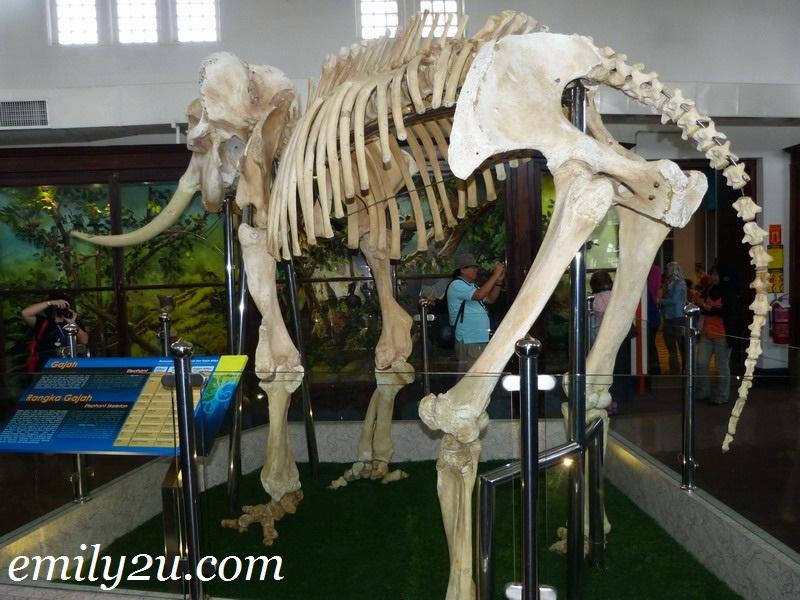 Perak Museum in Taiping - First Museum In Malaysia
