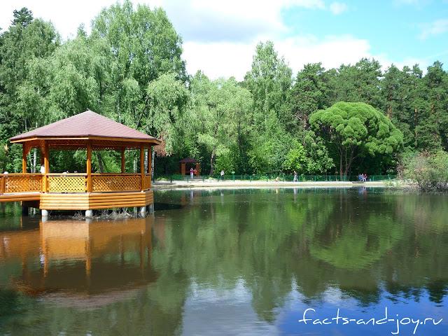 Озеро в новосибирском зоопарке
