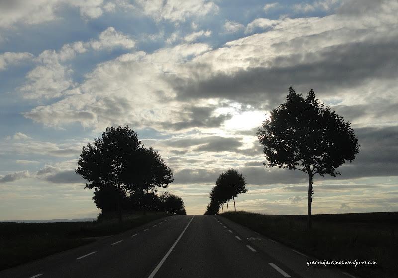 - Passeando até à Escócia! - Página 16 DSC05073