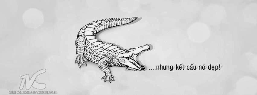 ảnh bìa facebook hài hước xấu như cá sấu
