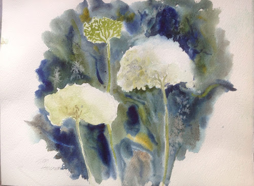 Hydrangea annabelle watercolour painting