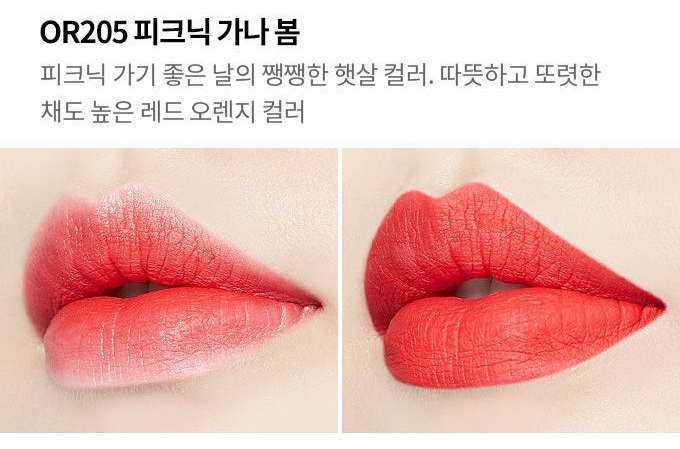 Etude House Blossom Picnic Matte Chic Lip Lacquer #15 OR205 Red for Picnic