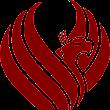 Phoenix Control S