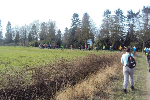 100,110, 80, 50km: marche du Zuid-Westhoek NL: 10-11/03/2012 DSC02552