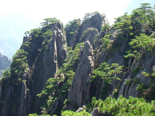 Ping Xu Photo 22