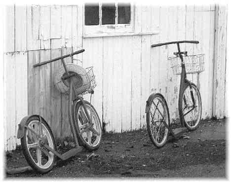 trottinettes amish a roues de 24 pouces, une a roues a batons, l'autre a roues a rayons