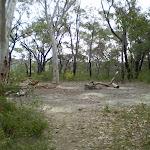 Ridgetop Campsite (6835)