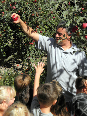 Lift, Twist, and Pull! New Owner Jeff Palk demonstrates the appropriate way to pick an apple from the fruit tree.