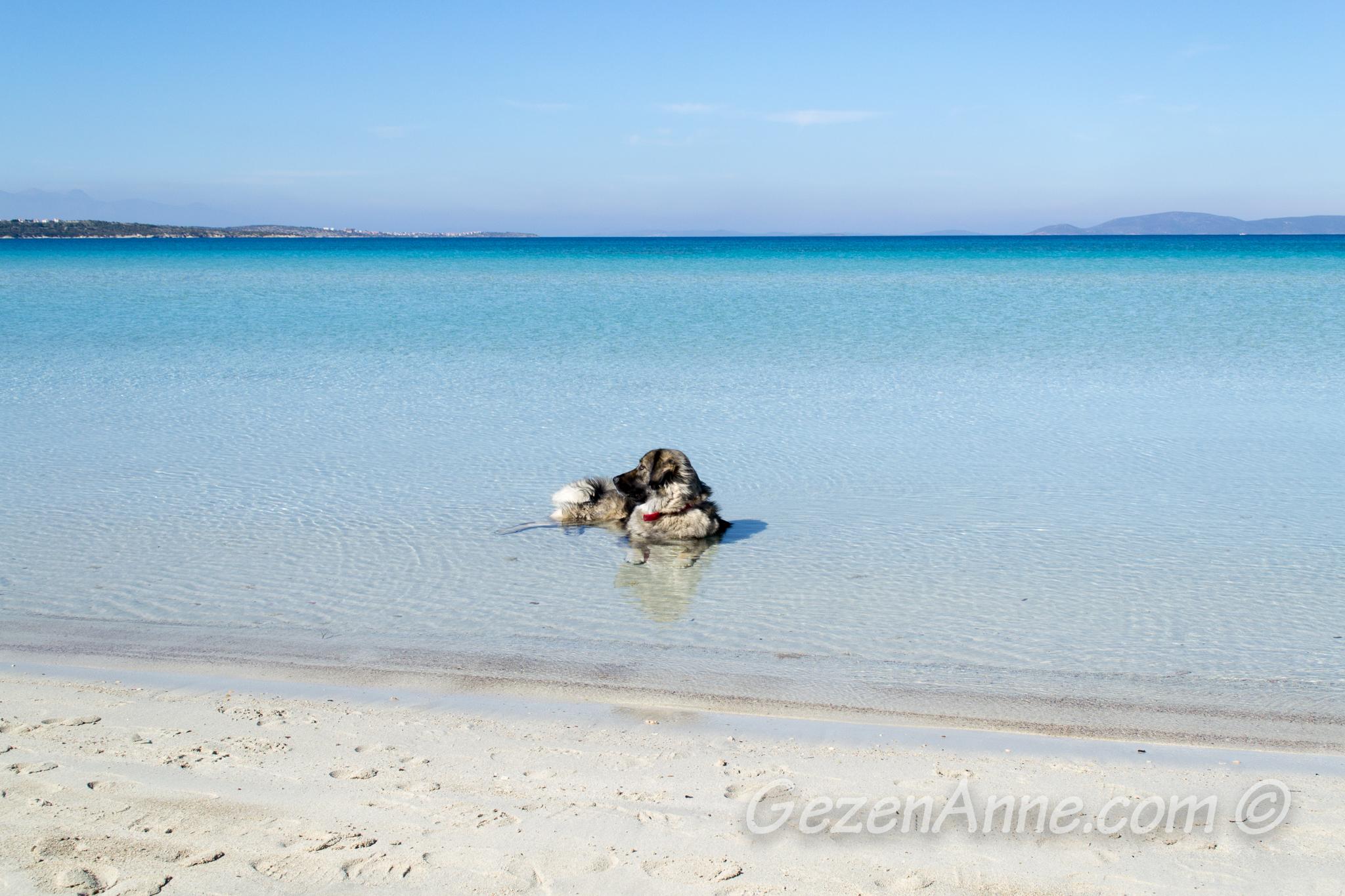 Ilıca sahilindeki turkuaz deniz, Çeşme