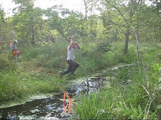 River Pole Vault swamp