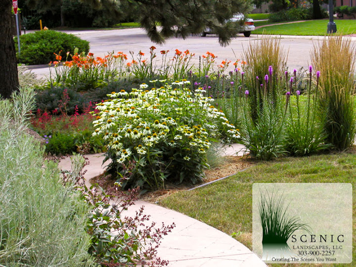 Landscape design: Perennial gardens