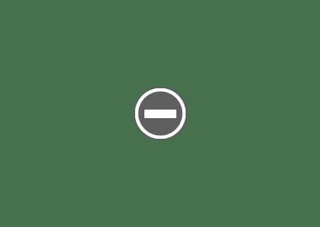 SAMSUNG RL60GZGIH Made in Poland Combina frigorifică SAMSUNG RL60GZGIH   Full NoFrost
