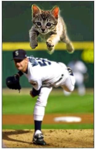 犬に襲われた子供を助けた飼い猫が始球式で投げるそうです。