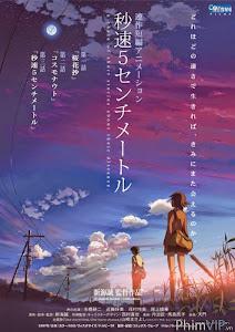 Tình Yêu Chân Thành - Byousoku 5 Centimeter poster