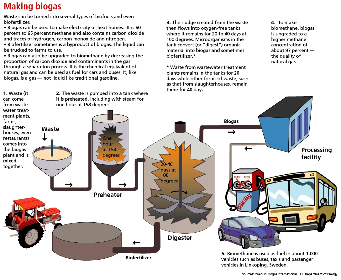 The Biogas Process