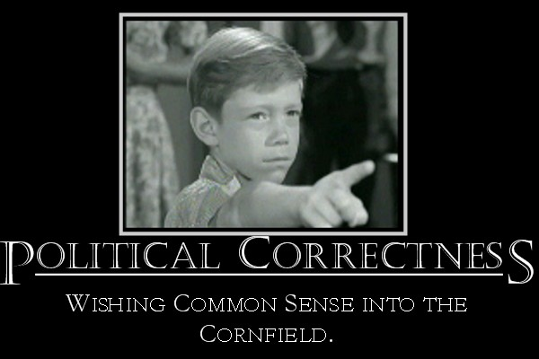understanding political correctness The term political correctness (adjectivally: politically correct commonly abbreviated to pc or pc) is used to describe language, policies.