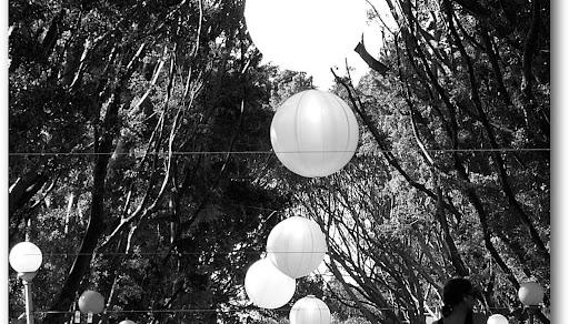 NZBlogPhoto21-2007-05-25-03-45.jpeg