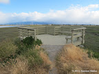 Viewing Platform at the end of Bay Trail