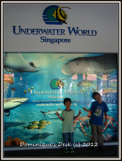 Underwater World Singapore  A Review