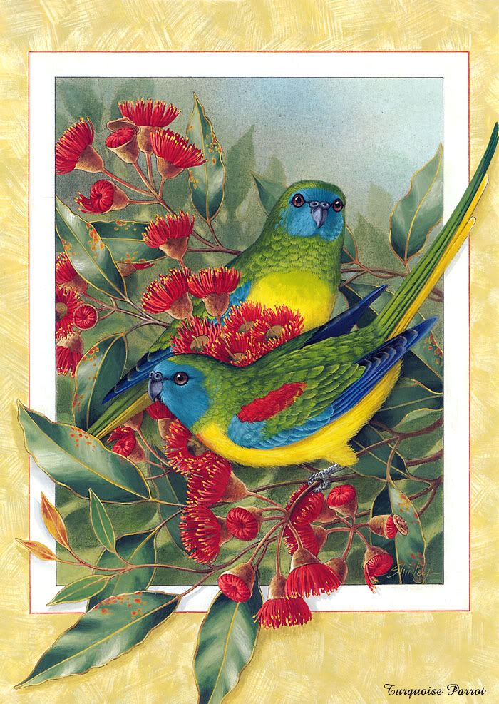 Most Amazing And Famous Birds Paintings.5