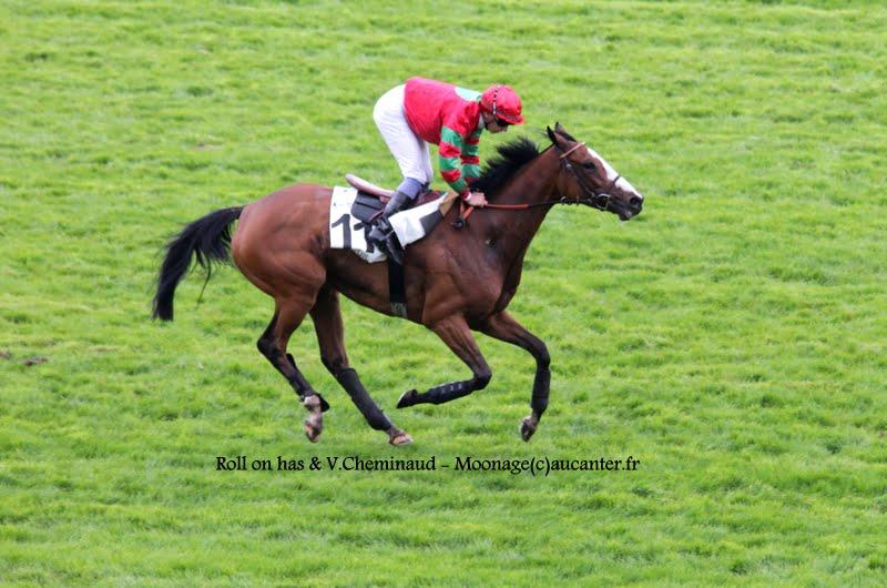 Photos Auteuil 16-05-2015 Week-end printanier de l'obstacle  IMG_9442