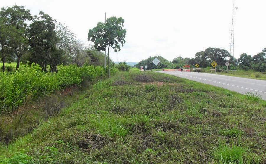 Lote Amplio en la Vía que Conduce del Cesar a Valledupar - Ruta del Sol - Costa Atlántica, Colombia
