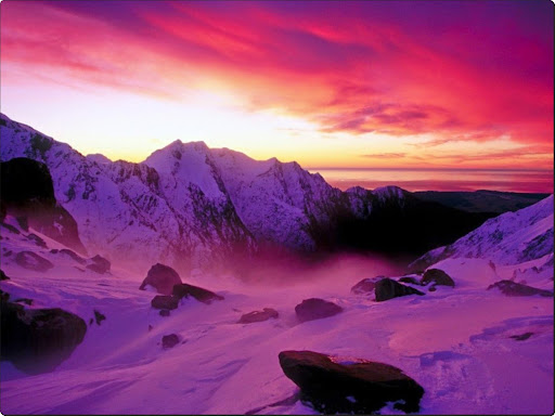 Franz Josef Glacier, New Zealand.jpg