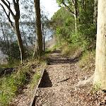 Bush steps offer glimpses of Lake Macquarie (389846)