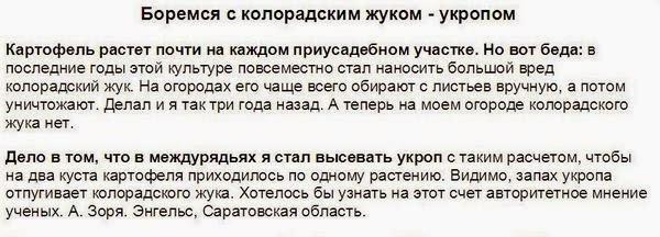 Террористы взорвали начиненный взрывчаткой автомобиль на украинском блокпосту под Марьинкой - Цензор.НЕТ 4866
