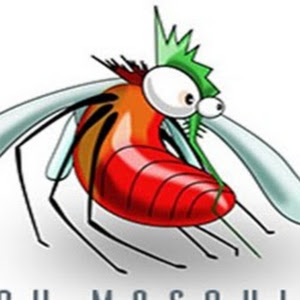 Who is Tech Mosquito?