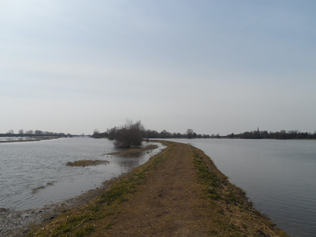 The Great Ouse at Earith