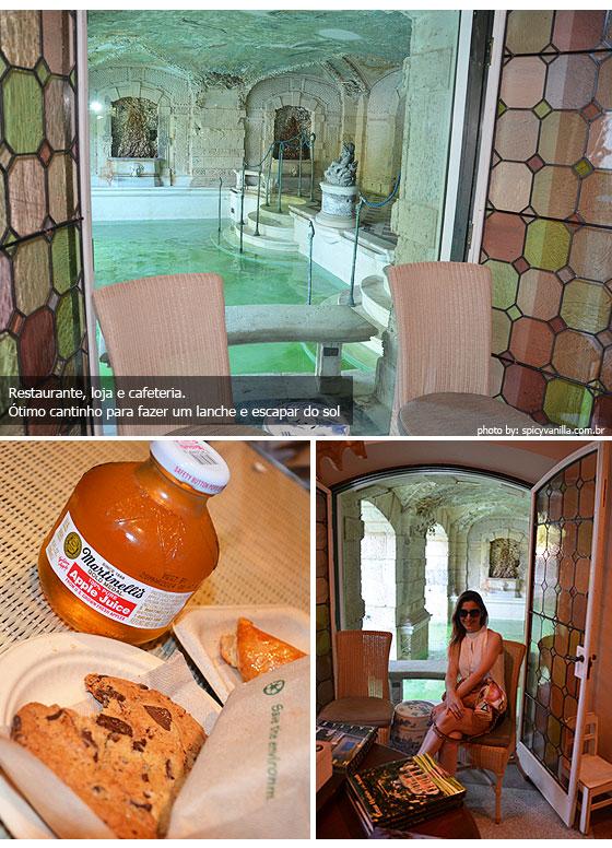 viscaya2 - Um minuto de Cultura | Vizcaya Museum & Gardens