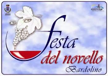 festa del vino novello Bardolino 2014