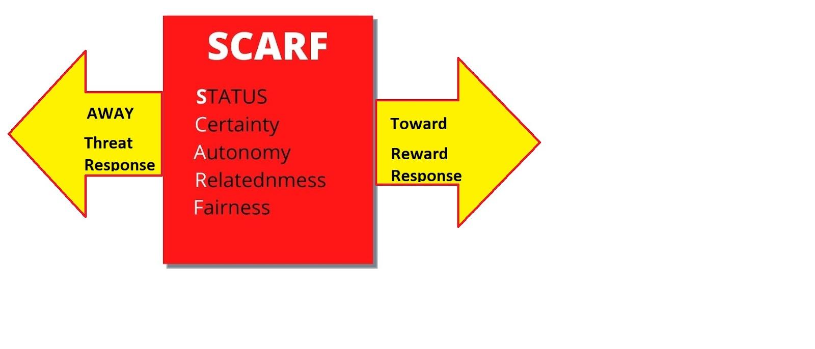 David Rock's Scarf Model