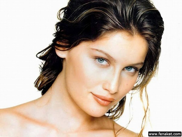 Laetitia_Casta_100_Photos - part 5(16pics)  #hot:hot,picasa
