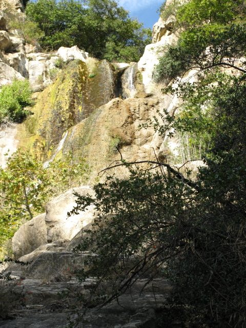 a glimpse of Tangerine falls from below