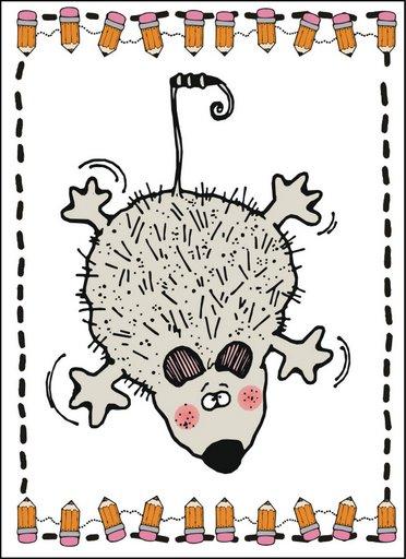 dji_opossum.jpg