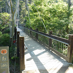 Flaggy Creek Bridge (339328)