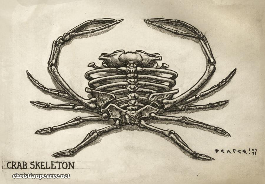 Christian Pearce Crab Skeletons