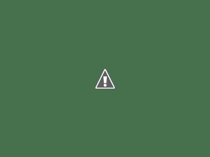 winter knits: hat 4