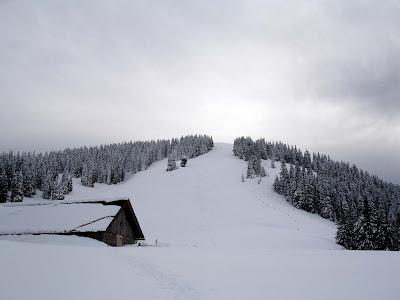 Planina Javornik.
